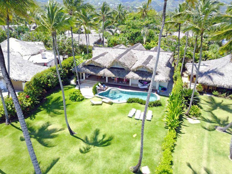 Palm Tree View…